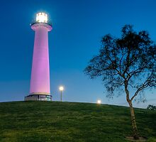 Lighthouse by Doug Dailey