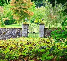 Leith Hall Gardens (Huntly, Aberdeenshire, Scotland) by Yannik Hay