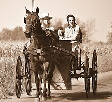 Amish Bliss by Donnie Voelker