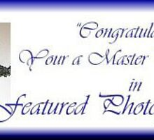 Master Photographer-Featured Photog Banner by Ann Warrenton