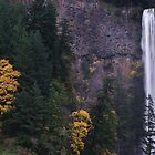 Multnomah Falls by John Behrends