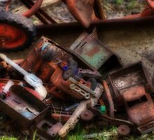 Graveyard of Forgotten Toys by Terence Russell