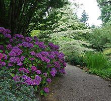 Bishop's Close Garden by John Behrends