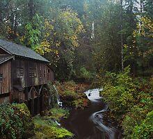 Cedar Creek Grist Mill  by John Behrends