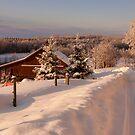 Heavy Snow  by KFuoco
