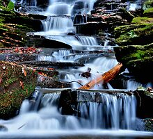 Little Ricky Falls # 2 by Debra Fedchin