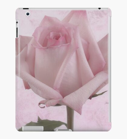 Single Pink Rose Blossom iPad Case/Skin
