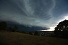 The Coming Storm, Terranora NSW by Odille Esmonde-Morgan