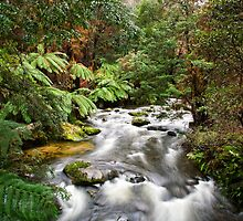 The River Running by Sean Farrow