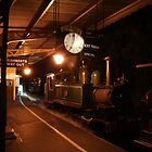 The Night Train by wilsonsz