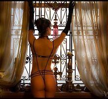 A Lady at Her Window by Julian Wilde