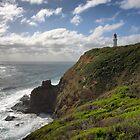 Cape Schanck Lighthouse by Jim Worrall