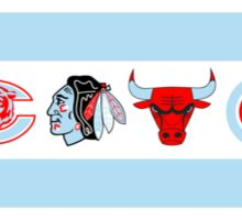 Chicago Flag Sports Teams- Cubs Sticker