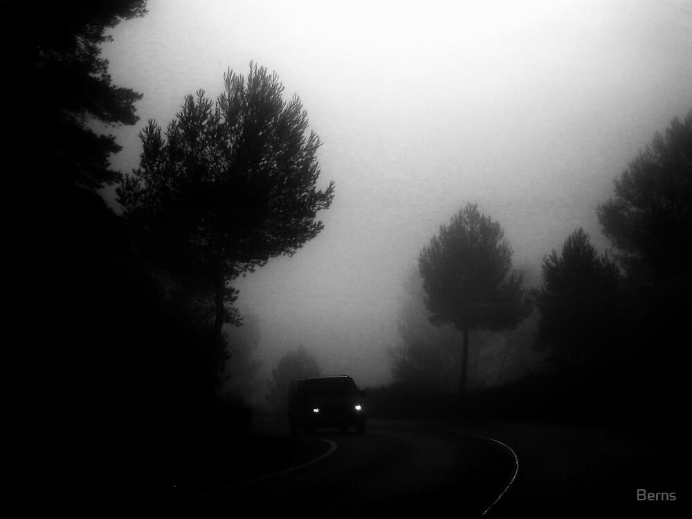Out of the fog... by Berns