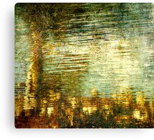 Suspended Matter Canvas Print