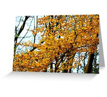 Golden Array Greeting Card