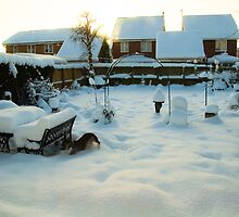 Snow on the Back Garden UK by Elaine123