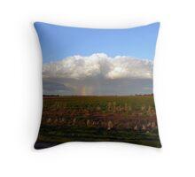 It's Raining Rainbows - Wogollow Farm, Benerembah Throw Pillow