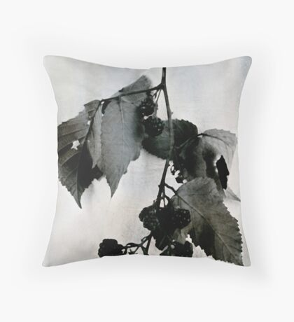 Seasons End Throw Pillow