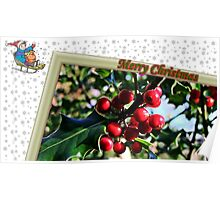 """"""" Holly Berries"""" Poster"""