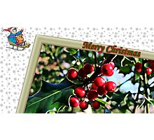 """"""" Holly Berries"""" Photographic Print"""