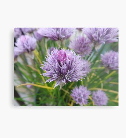 Woodland Flower Metal Print