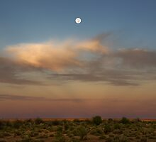 Westering Moon - Oodnadatta Track - South Australia by Jeff Catford