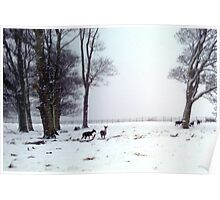 """Oh DEER"" its snowing again! Poster"