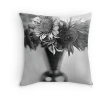 Sun on Glass II Throw Pillow