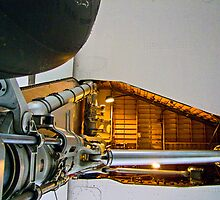 Ant`s Eye View - Concorde - G-BBDG - Brooklands Museum by Colin  Williams Photography