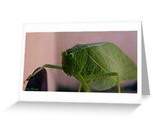I'm Not A Bug, I'm A Leaf Greeting Card