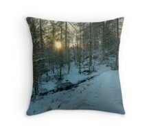 The Cold Light Of Day Throw Pillow