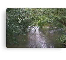 Willow over water Canvas Print