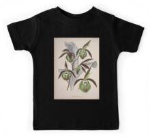Iconagraphy of Orchids Iconographie des Orchidées Jean Jules Linden V10 V10 1897 0028 Kids Tee