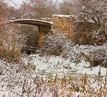 Barnsley Canal Bridge 2010 by picturistic