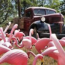 Flamingos and Truck by SuddenJim