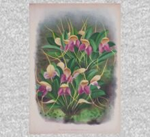 Iconagraphy of Orchids Iconographie des Orchidées Jean Jules Linden V4 1888 0163 Kids Tee