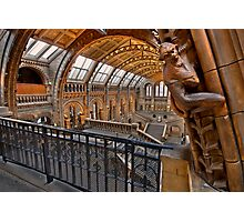 Natural history museum London Photographic Print
