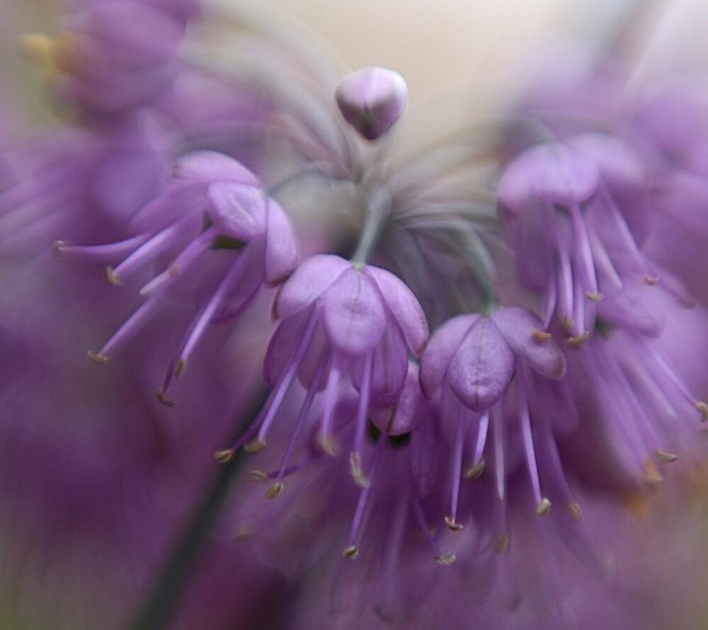 Fairy Bells... by kimmac
