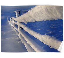Iced fence Poster
