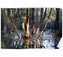 Skipwith Common - North Yorkshire Poster