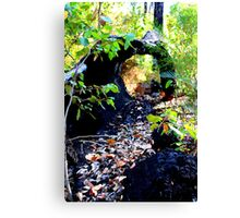Log On Bibbulmun Track Canvas Print