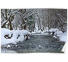 The Winter Stream, Congburn, County Durham. UK Poster