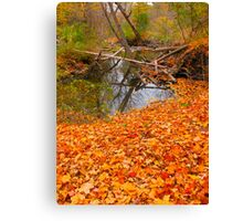 October Solace Canvas Print