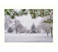 White And Wintery At Peel Park, Bradford Art Print