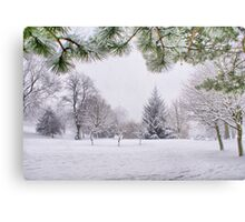 White And Wintery At Peel Park, Bradford Metal Print