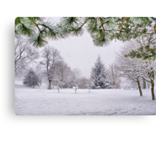 White And Wintery At Peel Park, Bradford Canvas Print