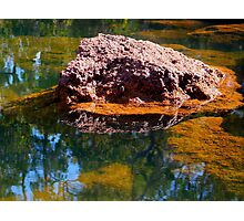 Rock In Water Photographic Print