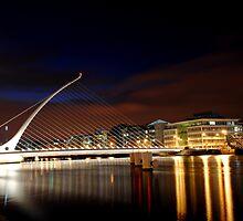 Samuel Beckett Bridge by Alan Reid