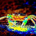 hot stuff_ crab style by bapix